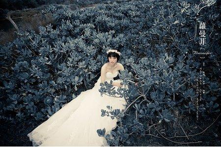 蘿曼菲 ‧ 玩攝影 【閨蜜婚紗分享】Miss.王 ◆ Miss.葉