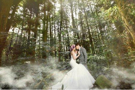 【時尚婚紗│迷霧森林】