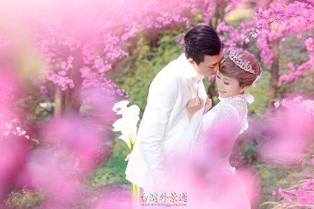 微電影婚紗 (包套+愛情MV)