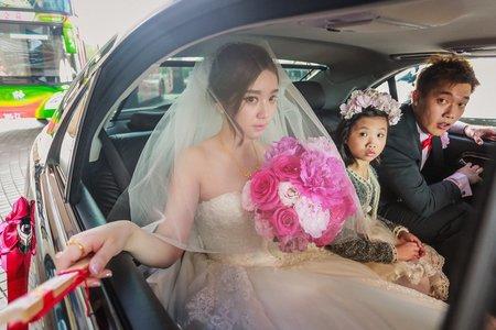 類婚紗精選 ❤️給忙碌新人看的❤️