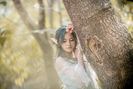 森林精靈創作