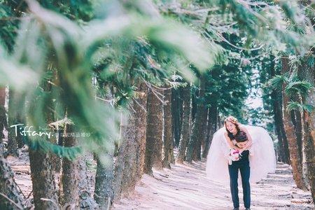 婚紗攝影|自然互動|森林系