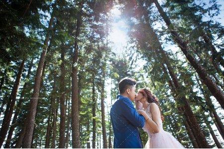 婚紗攝影|摯愛永恆|婚紗