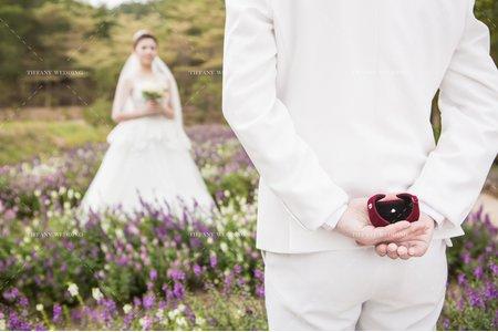 婚紗攝影|心有獨鍾|婚紗照
