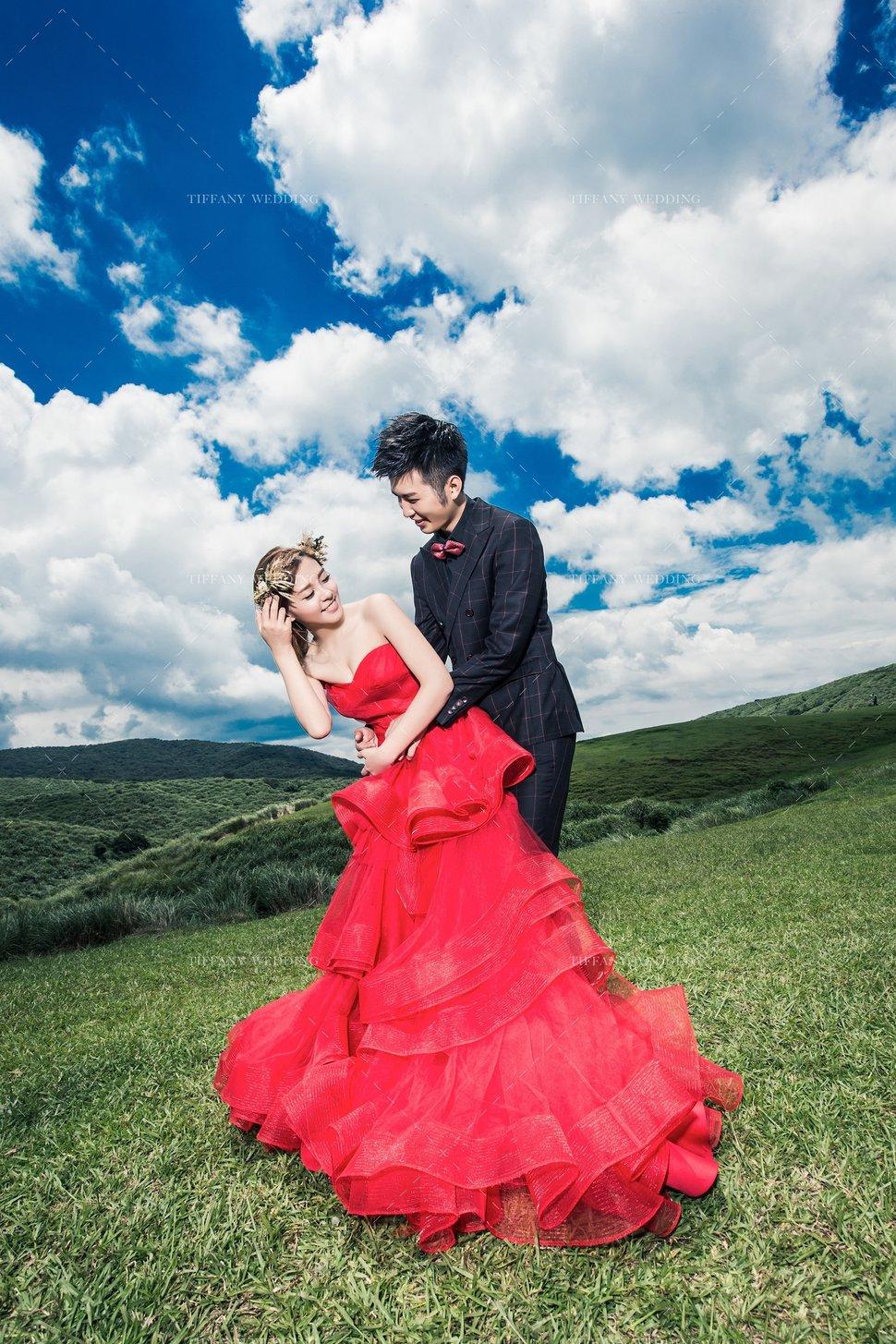 婚紗攝影作品/繡球花/帝芬妮婚紗/客照分享 - 台中帝芬妮精品婚紗 - 結婚吧