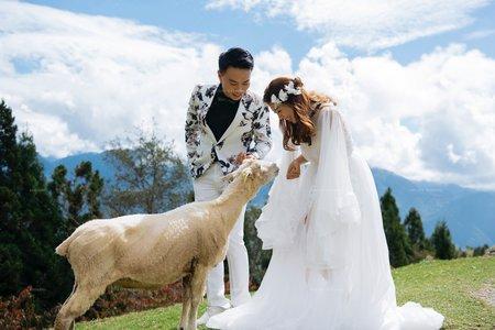 自然系列|婚紗照|旅拍