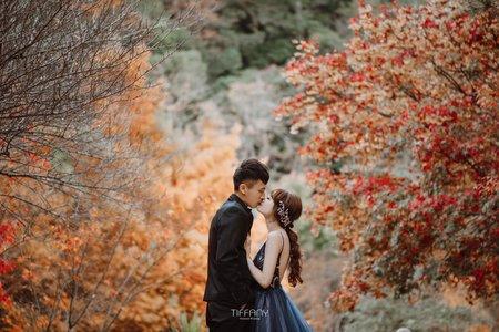 福壽山楓葉婚紗|季節限定