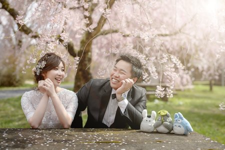 2018 日本京都櫻花季海外婚紗搶先看
