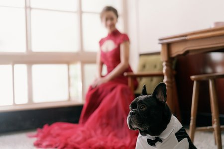 L&H婚禮紀錄
