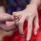 婚攝 高雄林皇宮 婚宴 時尚氣質新娘現身 S & R 022