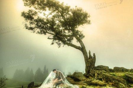 《看見清境》巴黎婚紗攝影