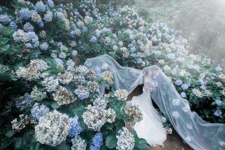 巴黎婚紗攝影W&T