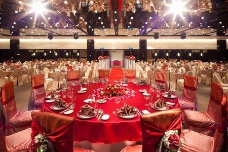 國際International Hall(百合+薔薇)