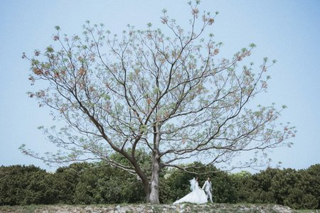 【婚禮記實】仲赫&采羚 婚禮紀實