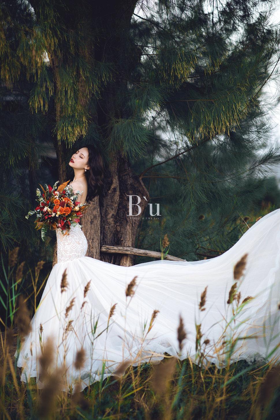 po11 - 蘇鳥 Birdie & Uma Lab《結婚吧》