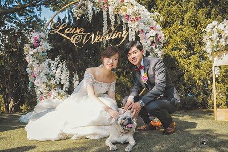Wedding Day|#草地證婚|精準抓拍