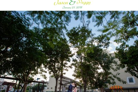 Jason&Peggy 歸寧全紀錄-台南市