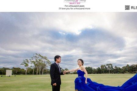 Anthony & Sally Wedding Day-澳洲,阿德萊德