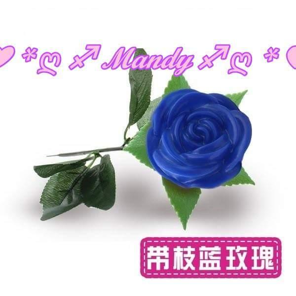 玫瑰花燈/LED深藍色玫瑰花燈-帶枝葉