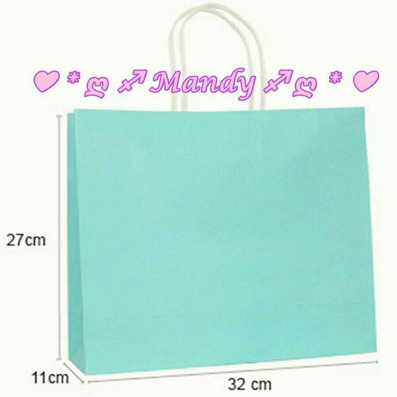 MIT製優質蒂芬妮水藍綠色禮物袋-橫版大