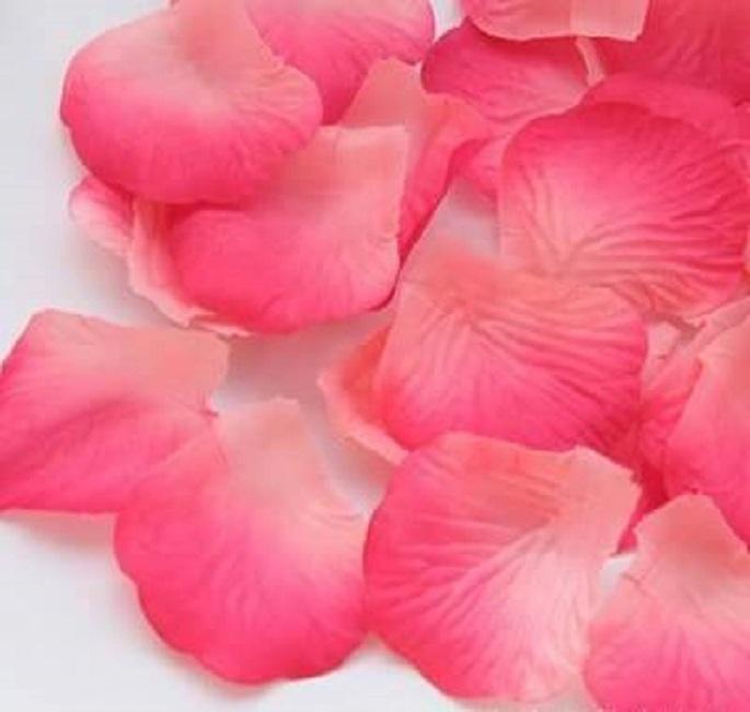 ? 絲布與絹布現貨仿真花瓣-粉橘漸桃
