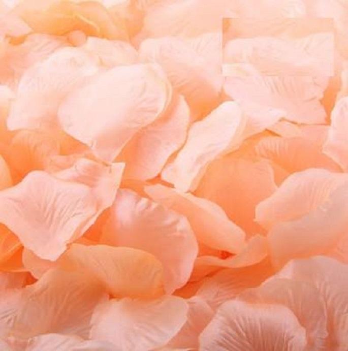 ? 絲布與絹布現貨仿真花瓣-香檳色