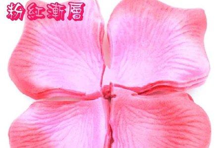高級不織布=無仿布材質.玫瑰放真花撒花瓣