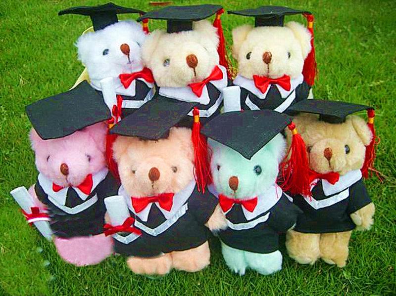 學士畢業熊