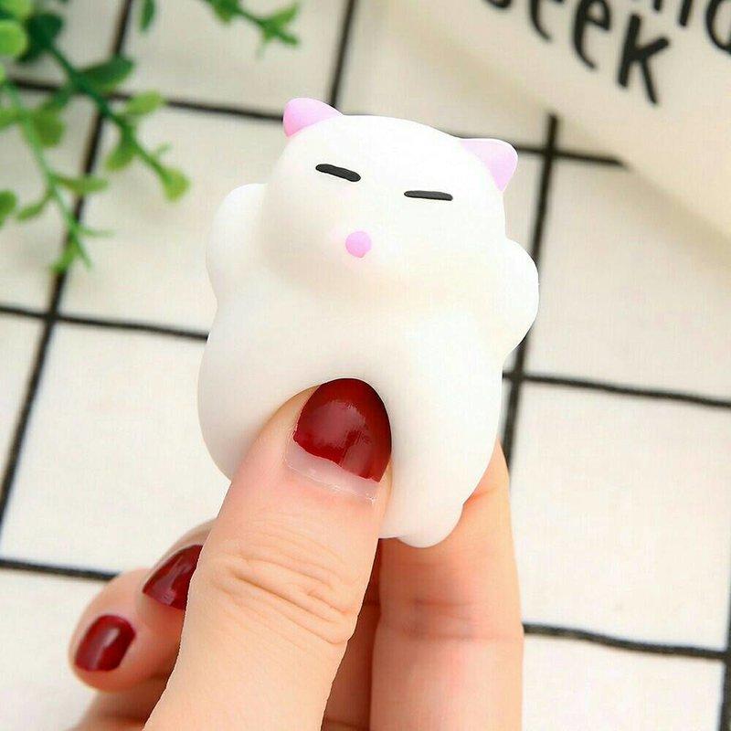 白白粉耳貓