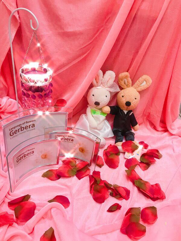 兩款會場佈置道具組出清 - 沁琳多元創意小物 禮俗用品/活動禮/贈品《結婚吧》