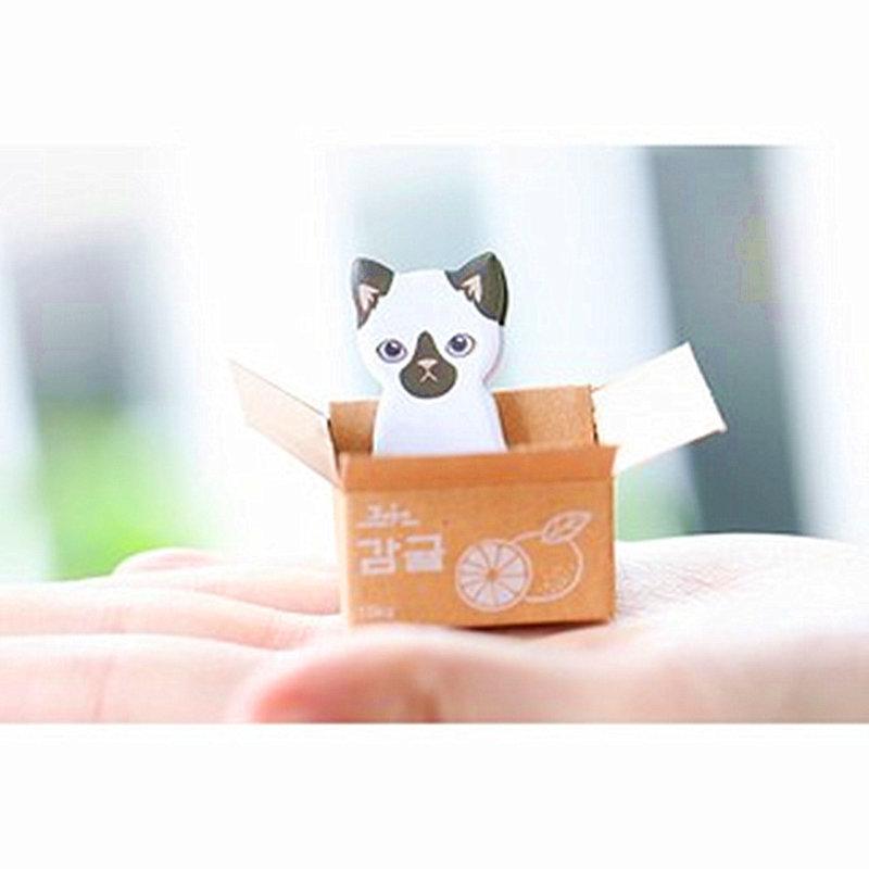 【進口】花馬村!二代求包養愛貓園小巧盒裝