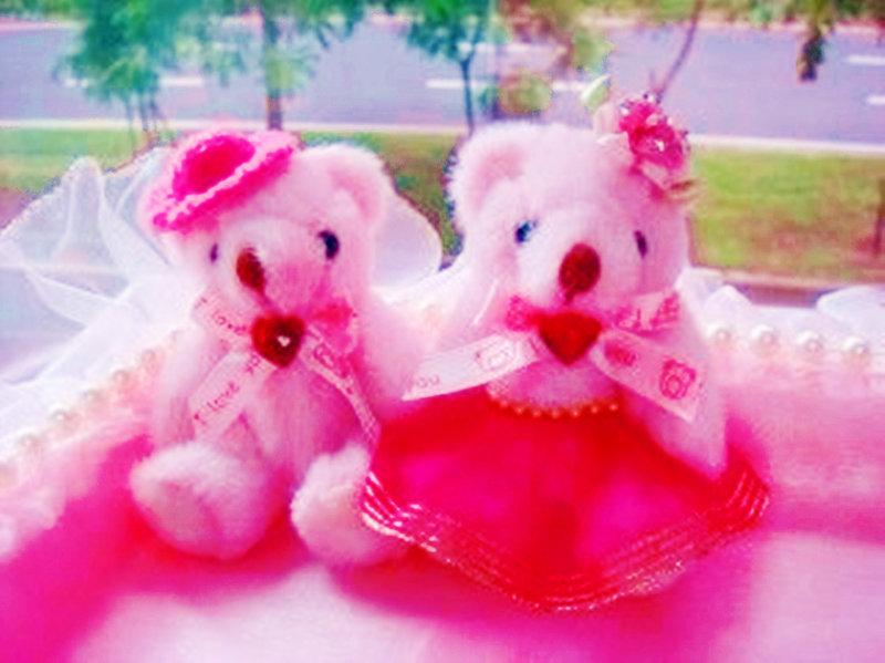 真幸福粉紅結婚 6件組-( 淺粉紅色 )