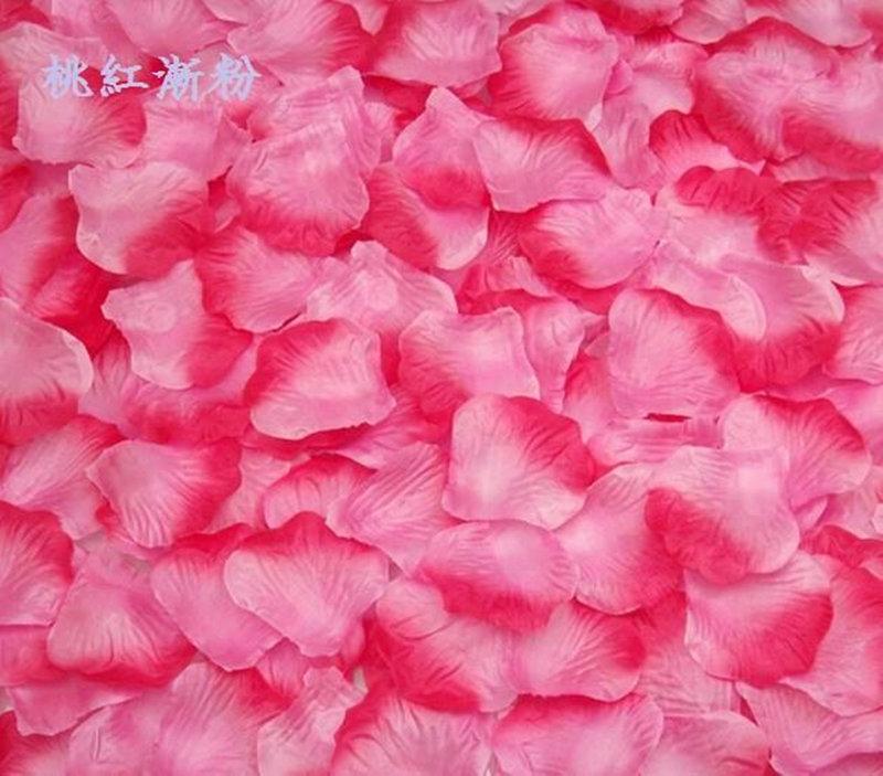桃紅漸層粉