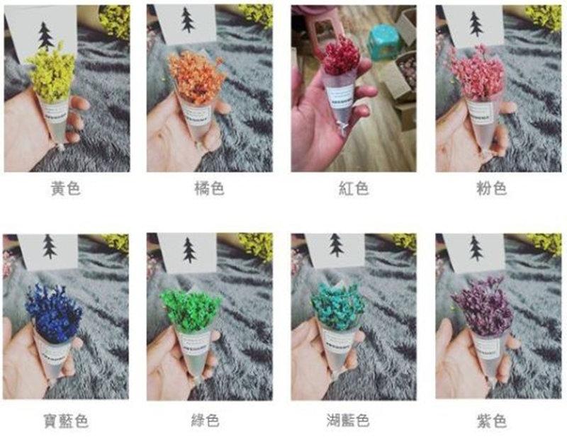 🎀振興專案🎀 水晶草描圖紙 小花束