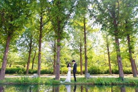 韓國 首爾林婚紗外拍