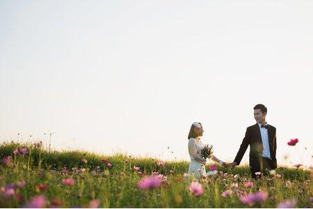 首爾 天空公園婚紗外拍