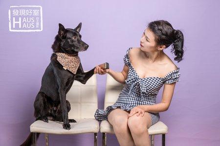 寵物入鏡|拍婚紗