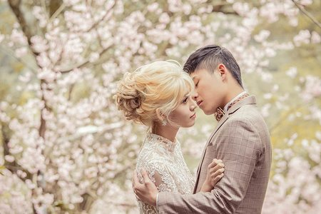 💙 櫻花季   HAUS