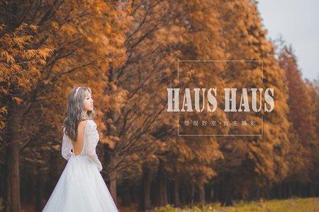 落羽松情 | HAUS