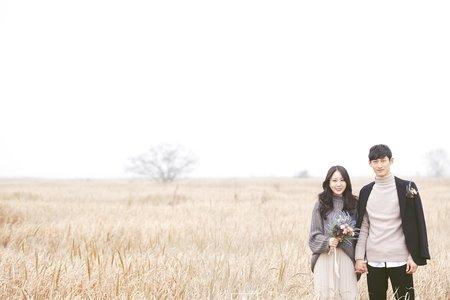 韓國婚紗攝影_戶外自助婚紗