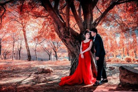 帷溒 ❤️ 雅雯 | 平面攝影 | 婚禮紀錄 | 一拍二錄小資方案 |