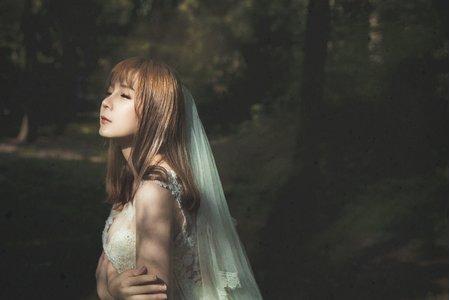 婚紗拍攝一日方案