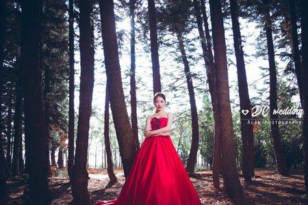 九天森林-婚紗攝影/台中婚紗/婚紗包套/自助婚紗