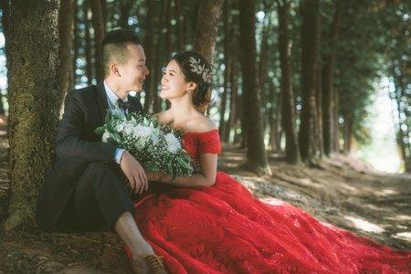 唯美森林系-婚紗攝影/台中婚紗/婚紗包套/自助婚紗