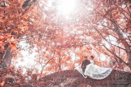 婚紗照-秋