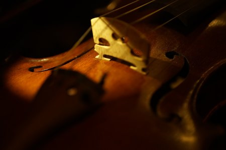皇家婚禮交響樂製作