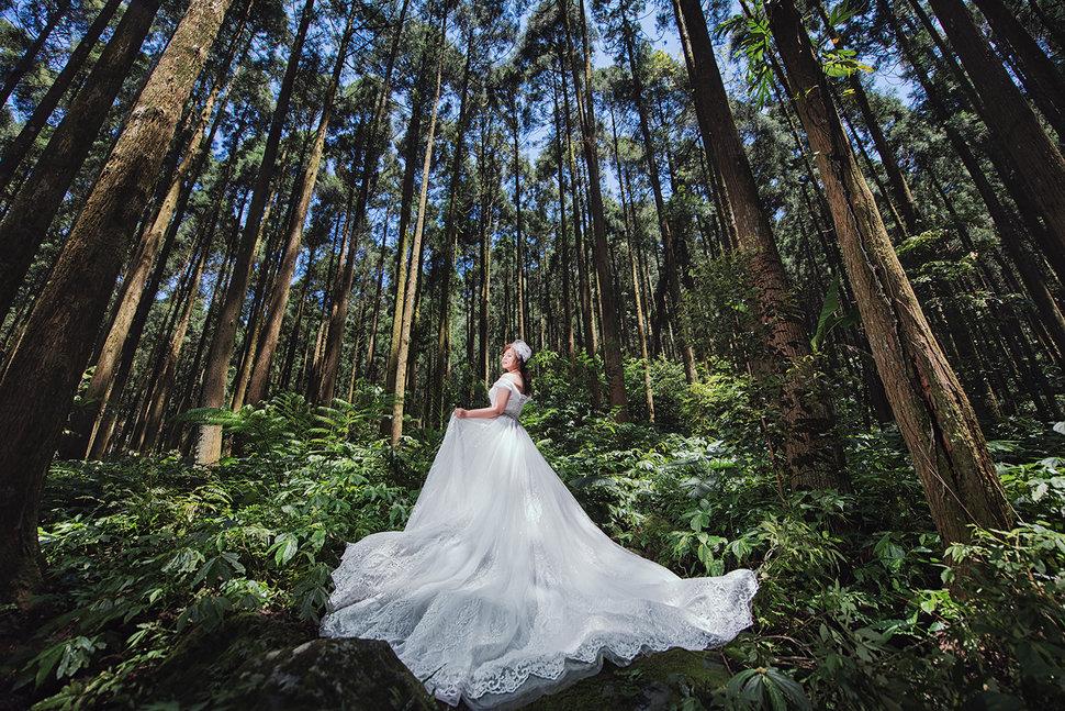 _KEN2639 - 赫本的祕密花園《結婚吧》