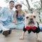 婚紗攝影工作室-寵物婚紗 (21)