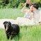婚紗攝影工作室-寵物婚紗 (32)