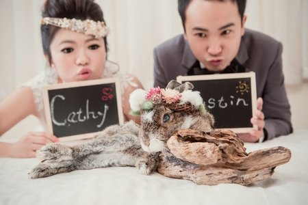 Mrs.C寵物婚紗